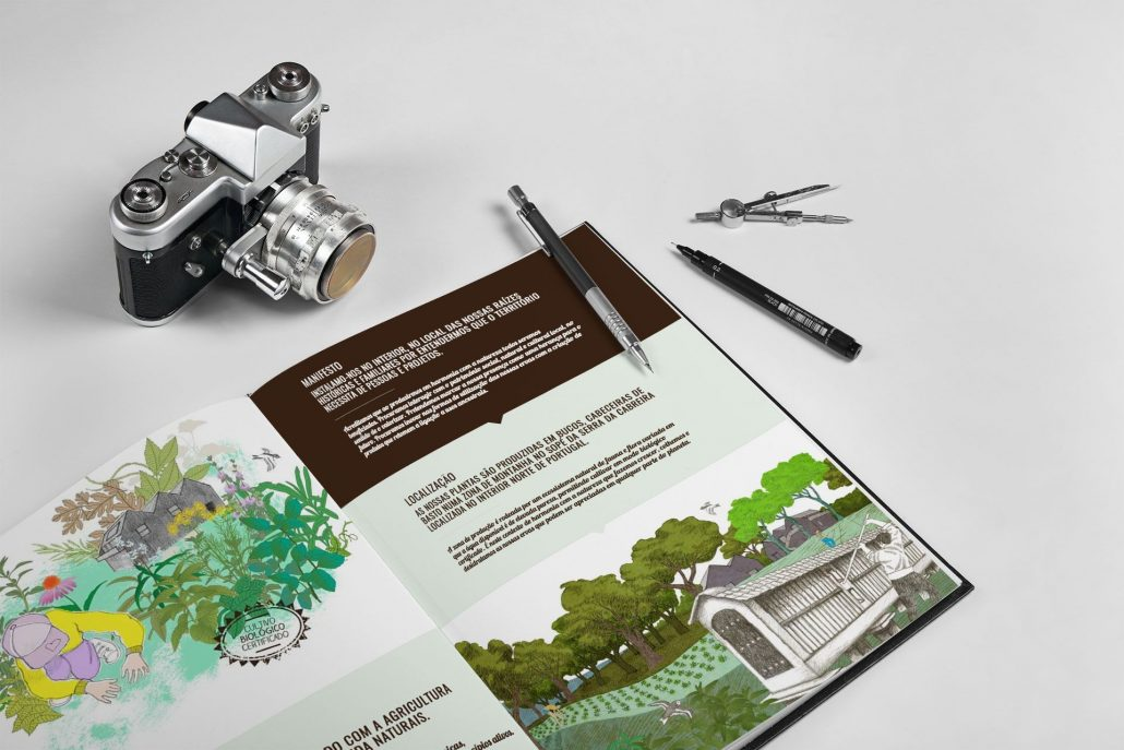 Portfolio Arboreto Web design e design gráfico em Braga.